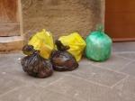 siena spazzatura per le vie del centro (3)