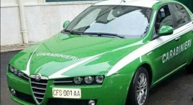 macchina-carabinieri-ex-forestale-foto-da-motori-it