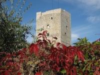 la-torre-di-vertine