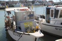 banco e barce del pesce fritto di mauro e andreia di castiglion della pescaia (3)