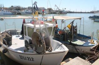 banco e barce del pesce fritto di mauro e andreia di castiglion della pescaia (4)