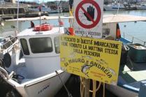 barche castiglion della pescaia