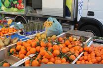 mercato di castiglion della pescaia