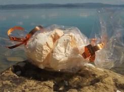 panetteria tassi castiglion del lago meringa gigante (2)