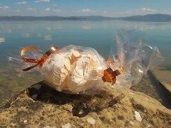 panetteria tassi castiglion del lago meringa gigante (5)