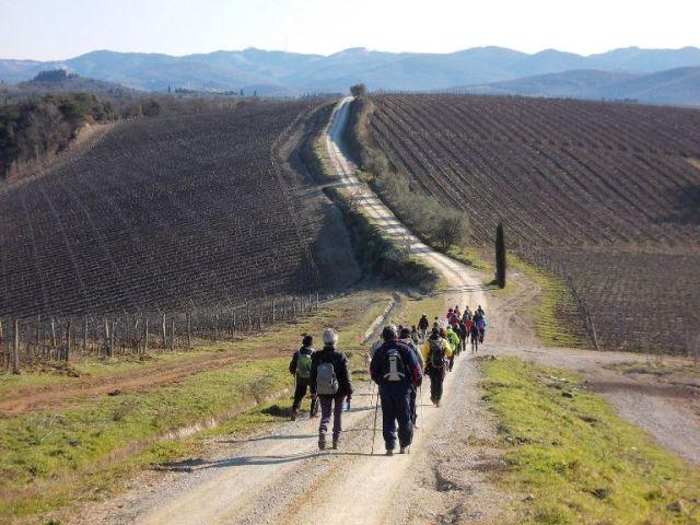 Sentieri-del-Chianti foto da il cittadino on line