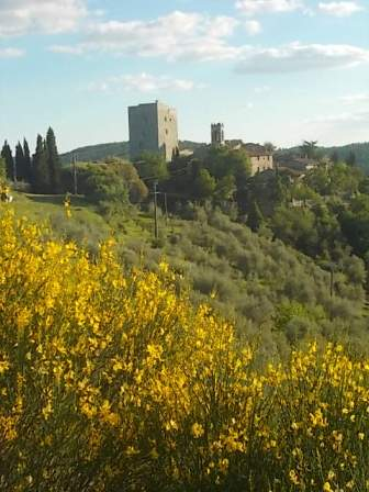 potatura oliveta di vertine (11)