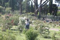 roseto di roma (15)