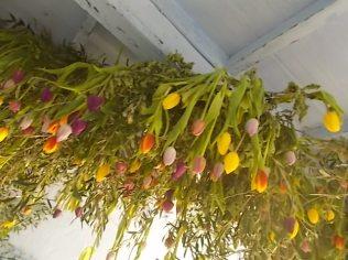 slow flowers podernovi chianti castello di brolio (14)