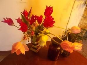 slow flowers podernovi chianti castello di brolio (6)