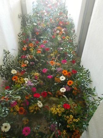 slow flowers podernovi chianti castello di brolio (8)