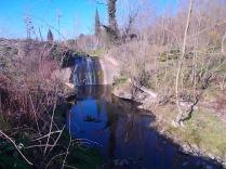 taglio-alberi-torrente-riluogo-4