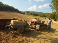 gianluca, palificazione e bagnatura vigna nuova vertine 2017 (15)