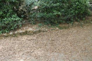 lizza siena degrado lago dei cigni (7)