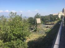 abbandono gisrdini montalcino (2)