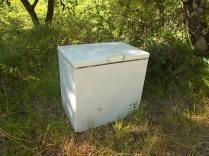 congelatore sulla strada per vertine (2)