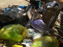 guistrigona rifiuti sulla strada (3)