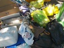 guistrigona rifiuti sulla strada (4)
