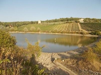 abbeverata del daino al lago della villa a radda (5)
