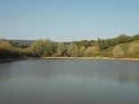 abbeverata del daino al lago della villa a radda (8)