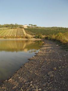 abbeverata del daino al lago della villa a radda (9)
