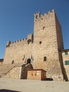 castellina in chianti (4)