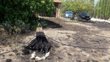 incendio colle san marcellino (3)