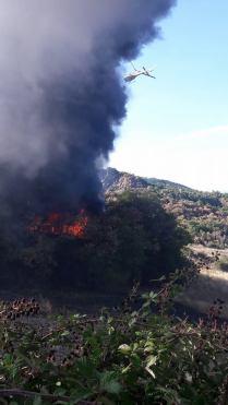 incendio montegrossi 16 agosto 2017 foto racchetta gaiole in chianti (5)