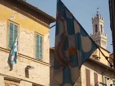 siena via duprè bandiere onda vittoriosa (3)