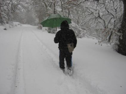 inverno a vertine (1)