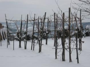 inverno a vertine (56)