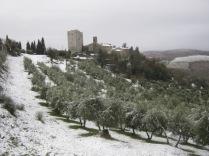 inverno a vertine (6)