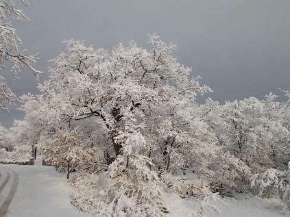 inverno a vertine (60)