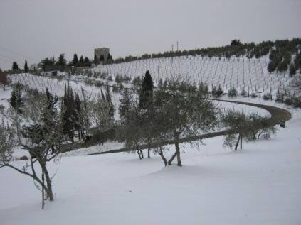 inverno a vertine (73)