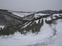 inverno a vertine (74)
