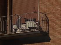siena, la vespa nel terrazzo (12)