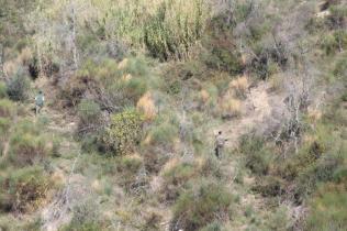 vertine battuta di caccia al fagiano (9)