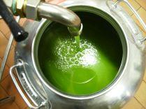 olio di vertine (1)