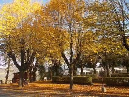 radda in chianti autunno (8)
