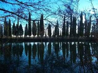 villa-arceno-edicolo-di-dioniso-viale-cipressi-riflessi-sullacqua-lago-4
