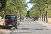 macchine viale san galgano (5)