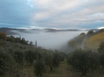 nebbia a vertine (2)