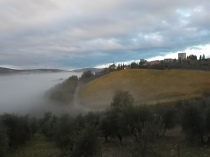 nebbia a vertine (4)