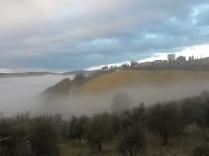 nebbia a vertine (6)