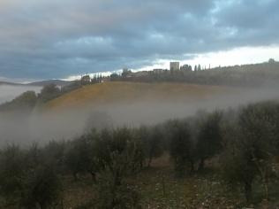 nebbia a vertine (8)
