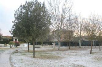 neve rapolano terme 9 dicembre 2017 (8)