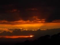 pecore, crete senesi, tramonto (17)