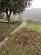 vertine aratura cinghiali monumentoai caduti (13)