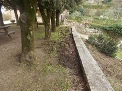 vertine aratura cinghiali monumentoai caduti (14)