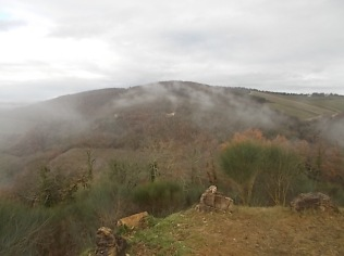 vertine, chianti, nebbia gennaio 2018 (12)